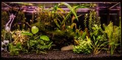 аквариум 115л акваплюс lux
