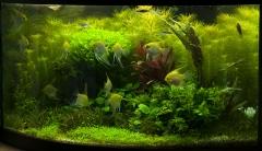 аквариум с 4 т5, 1-827