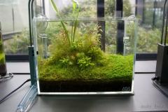 Ada gallery aqua 3